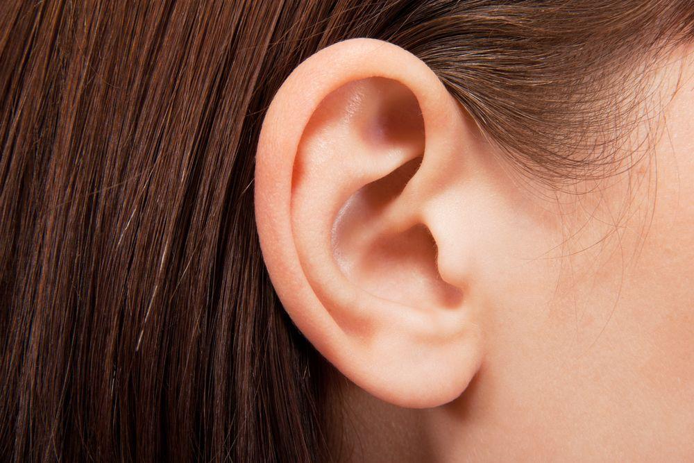 Nahaufnahme eines Ohres nach erfolgreicher Ohrenkorrektur